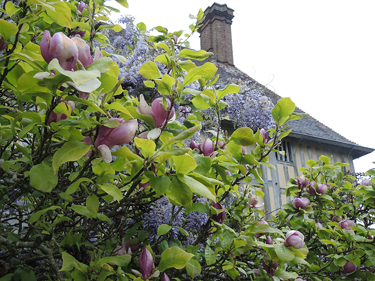 oxford_garden_design_Great-Dixter-Perch-Hill-top4