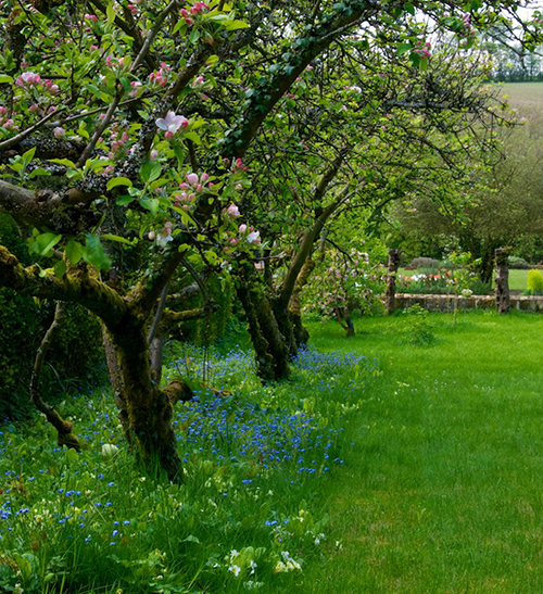 Dale&Heybrook_cotswolds_garden_designers_cotswold_country_house15