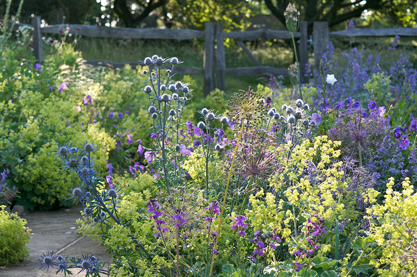 Dale&Heybrook_cotswolds_garden_designers_cotswold_country_house_8